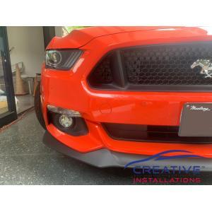Mustang Parking Sensors