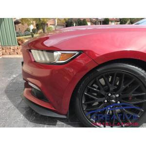 Mustang Blind Spot Sensors