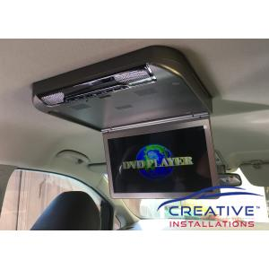 Carnival Roof DVD Player