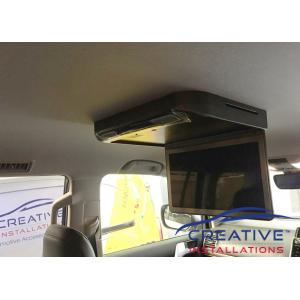Prado Roof DVD player